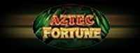 Play Aztec Fortune slots at the Q