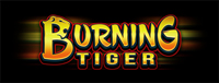 Play Vegas-style slots at the new Quil Ceda Creek Casino like the exciting Burning Tiger video gaming machine!