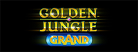 Play Vegas-style slots at the new Quil Ceda Creek Casino like the exciting Golden Jungle Grand video gaming machine!