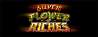 Play Vegas-style slots at the new Quil Ceda Creek Casino like the exciting Super Flower of Riches video gaming machine!
