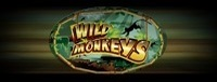 Play Vegas-style slots at the new Quil Ceda Creek Casino like the exciting Wild Monkeys video gaming machine!