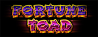 Play slots at Quil Ceda Creek Casino like the exciting Fortune Toad video gaming machine!