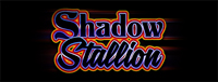 Play slots at Quil Ceda Creek Casino just north of Bellevue near Marysville, WA on I-5 like the super fun Shadow Stallion!