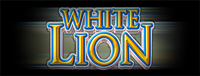 At Quil Ceda Creek Casino just north of Seattle on I-5 you can play the exciting White Lion slot machine!
